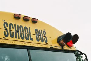 655548_school_bus_red_light