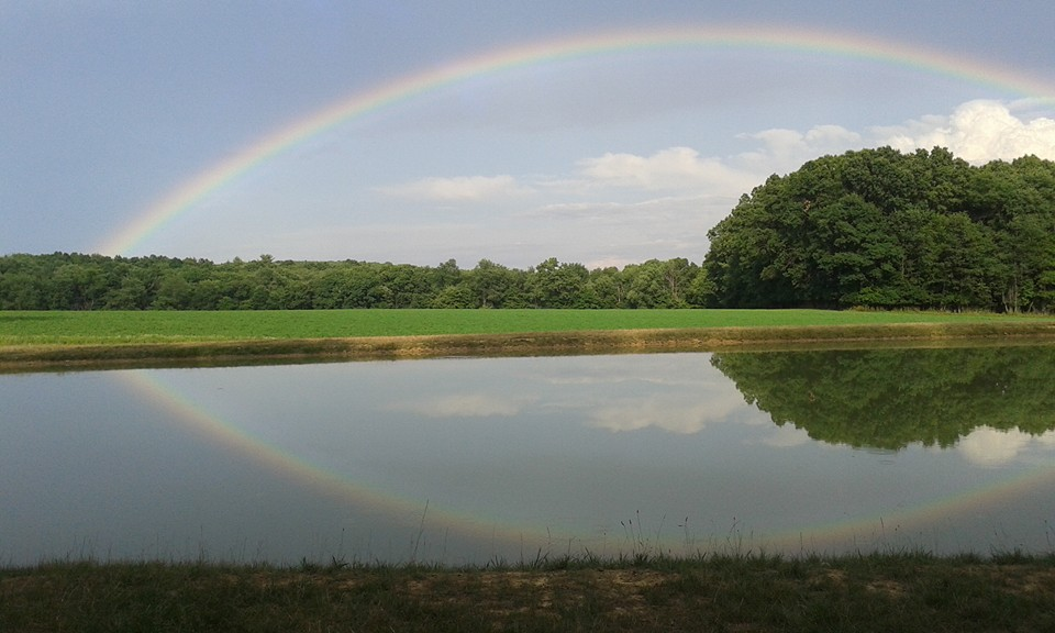After a rainstorm in Lucinda, Pa. Photo submitted by Susie Griebel.