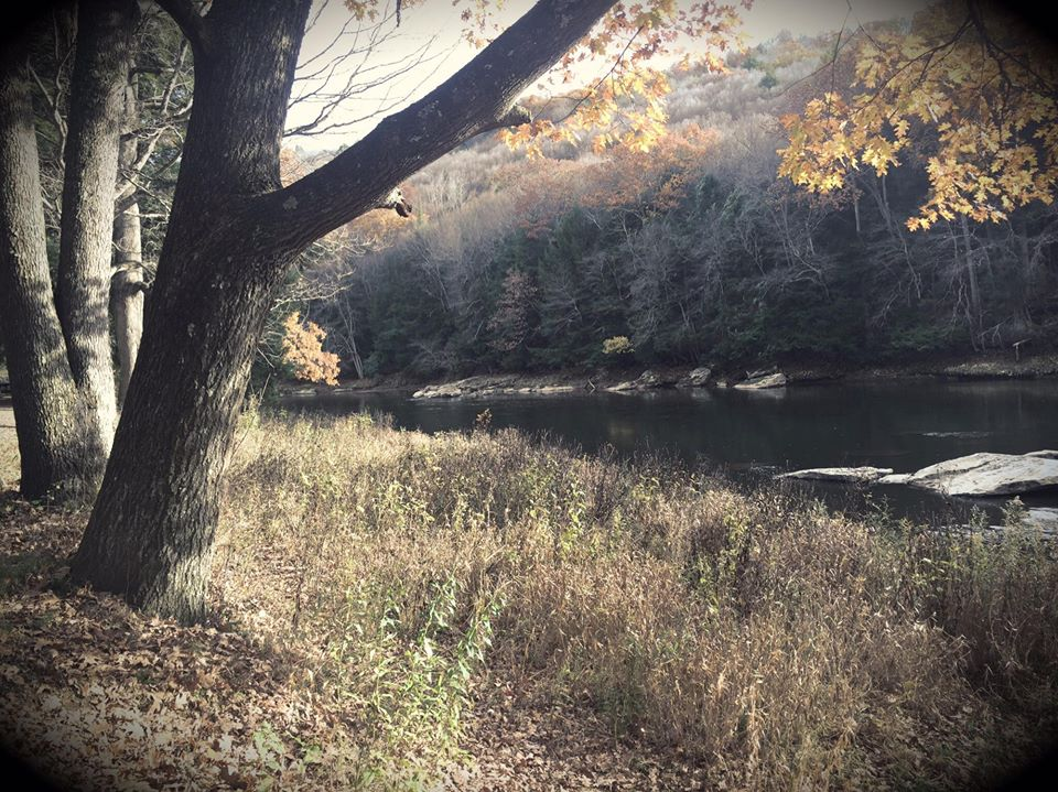 """""""The Clarion River at Cook Forest.""""  Submitted by Pam Selker Rak."""