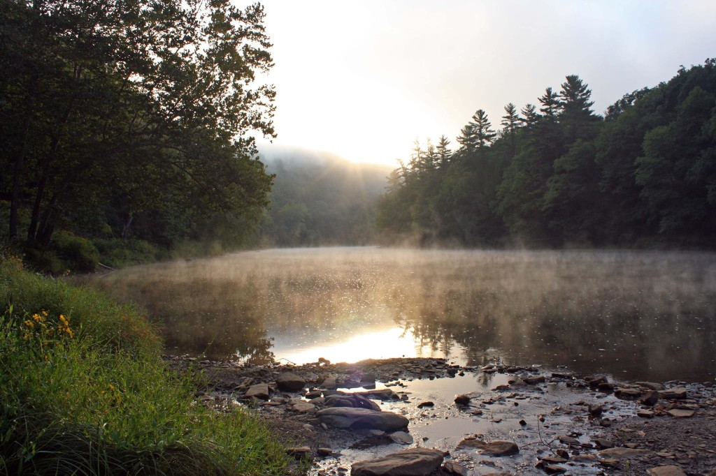 Sunrise on the Clarion River in Cooksburg, Pa. Photo courtesy of Pale Whale Canoe Fleet.