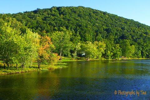 """""""What a beauty of a day in Tionesta today (September 13, 2016)! I noticed a little color starting to pop up along the river.""""  Photo courtesy of Photographs by Tina."""