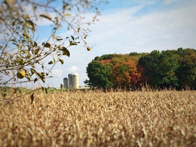 """View of Griebel Dairy farm from Sunset drive, Lucinda, Pa.""  Submitted by Erin Obenreder."