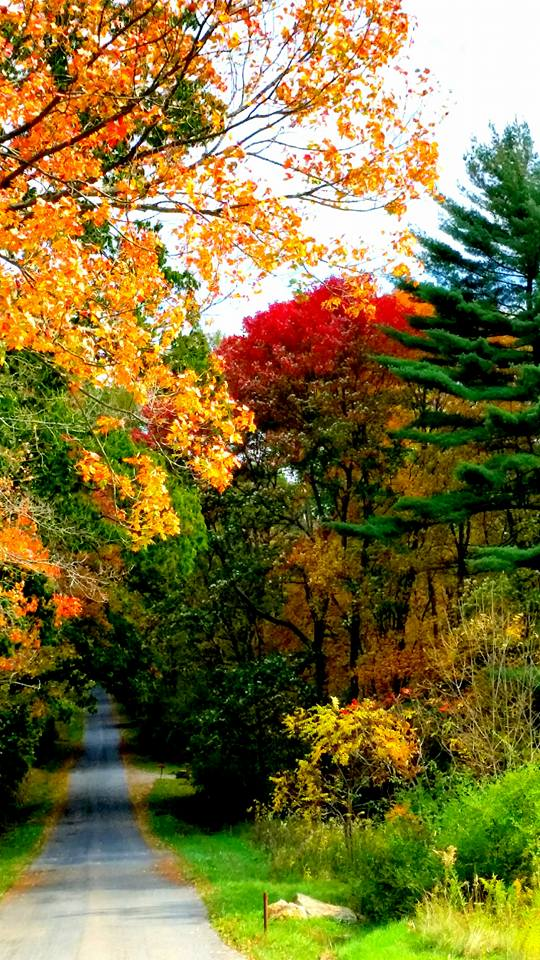Fisher, Pa. Submitted by Jennifer McBride Rupp.