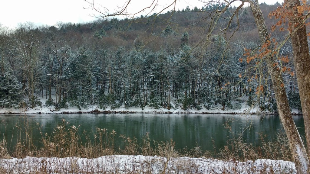 """""""Picture taken along River Road in Cook Forest, Pa."""" January 31, 2017. Submitted by Tammy Domiano-Christy."""