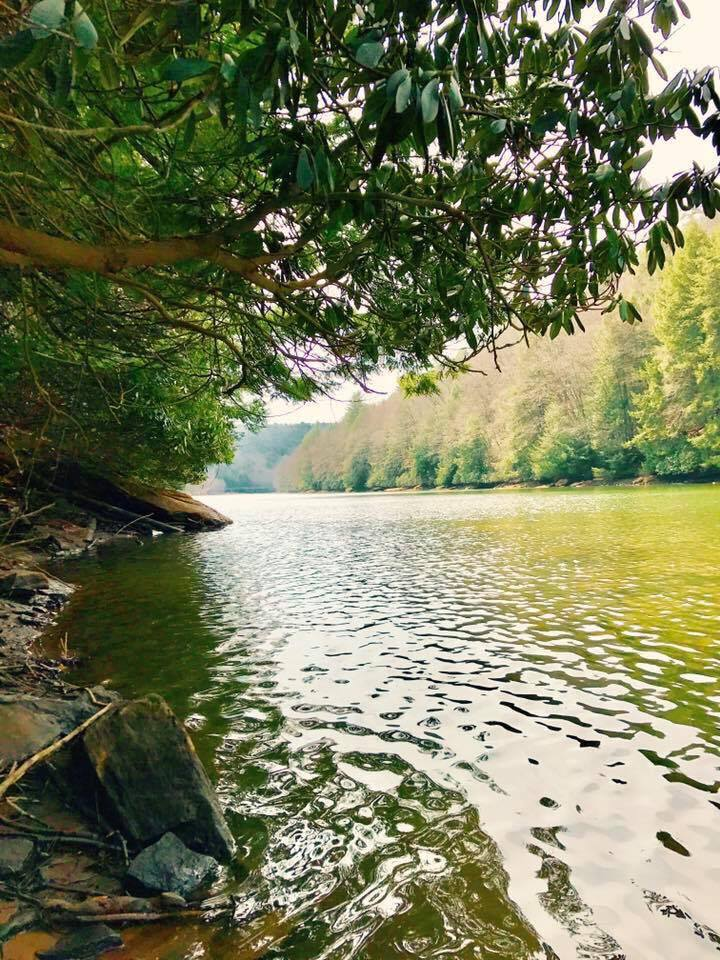 Clarion River by Piney Dam. Photo taken by Heather Fox.