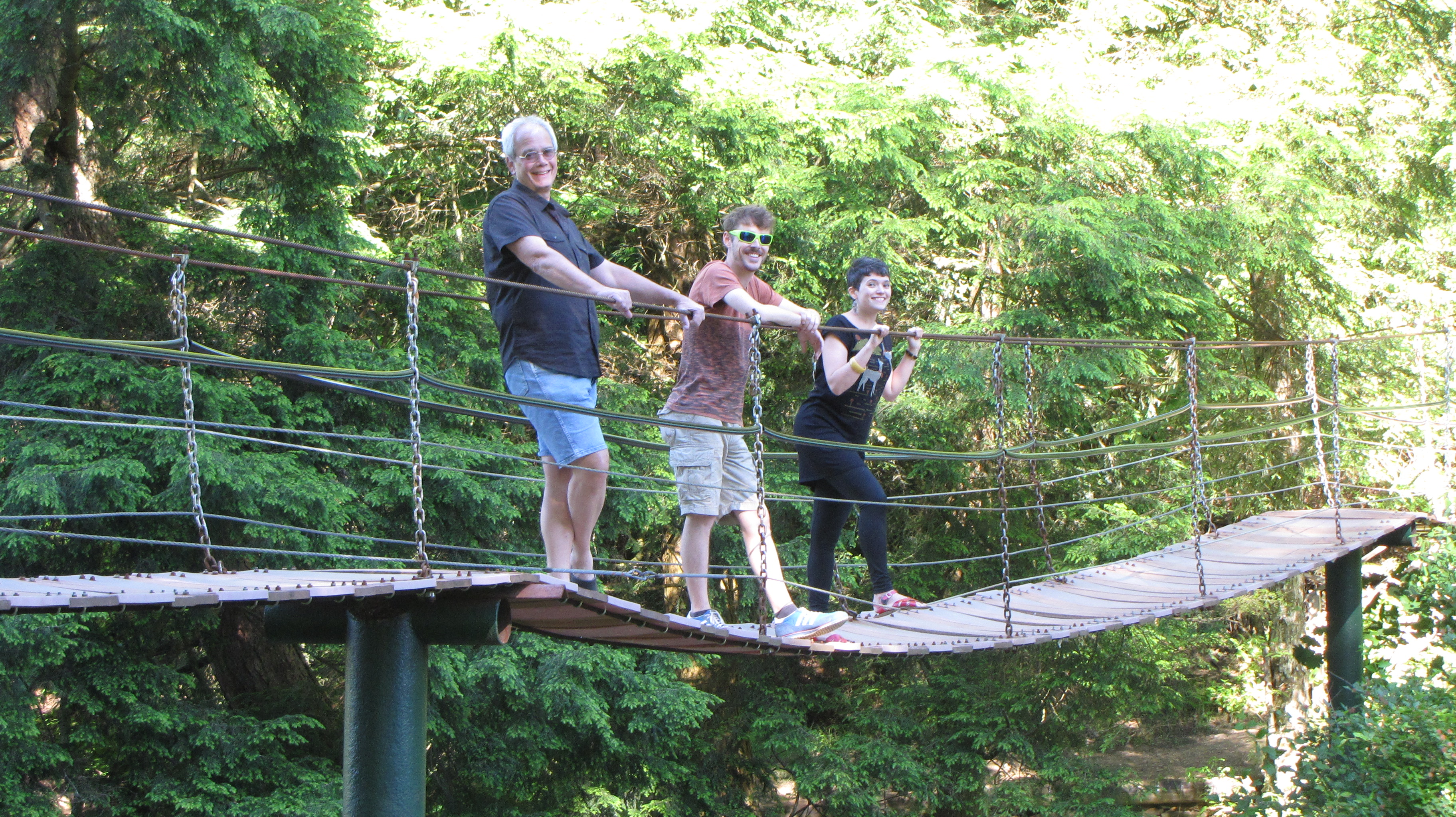 Swinging Bridge B