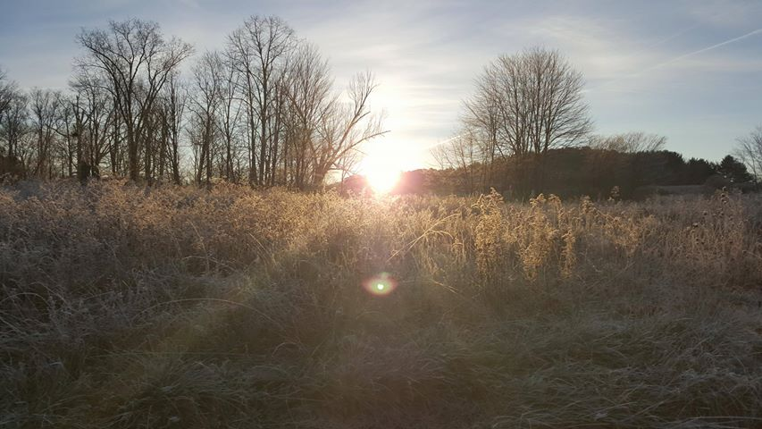 Frosty sunrise. Photo submitted by Gail Kline.