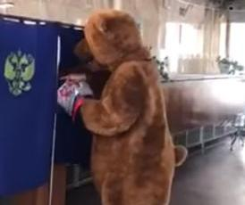 Bear-casts-ballot-in-Russian-presidential-election