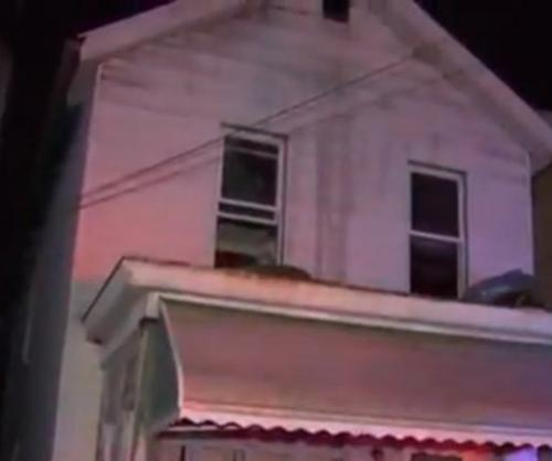 Cat-credited-with-rescuing-Pennsylvania-couple-from-fire