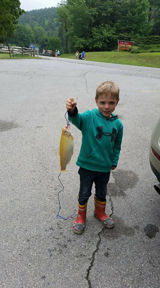 boy and fish