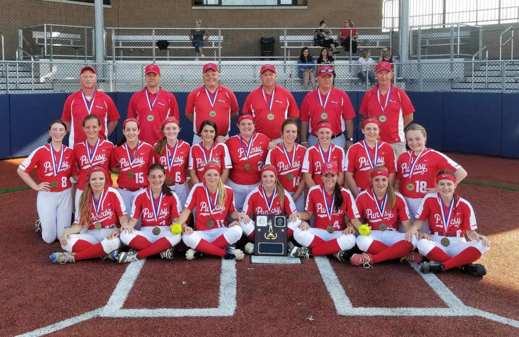 2018-Punxsutawney-District-9-Softball-Champs-4A-1024x665