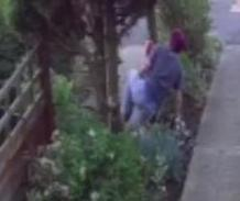 Gnome-thief-takes-a-tumble-in-British-yard