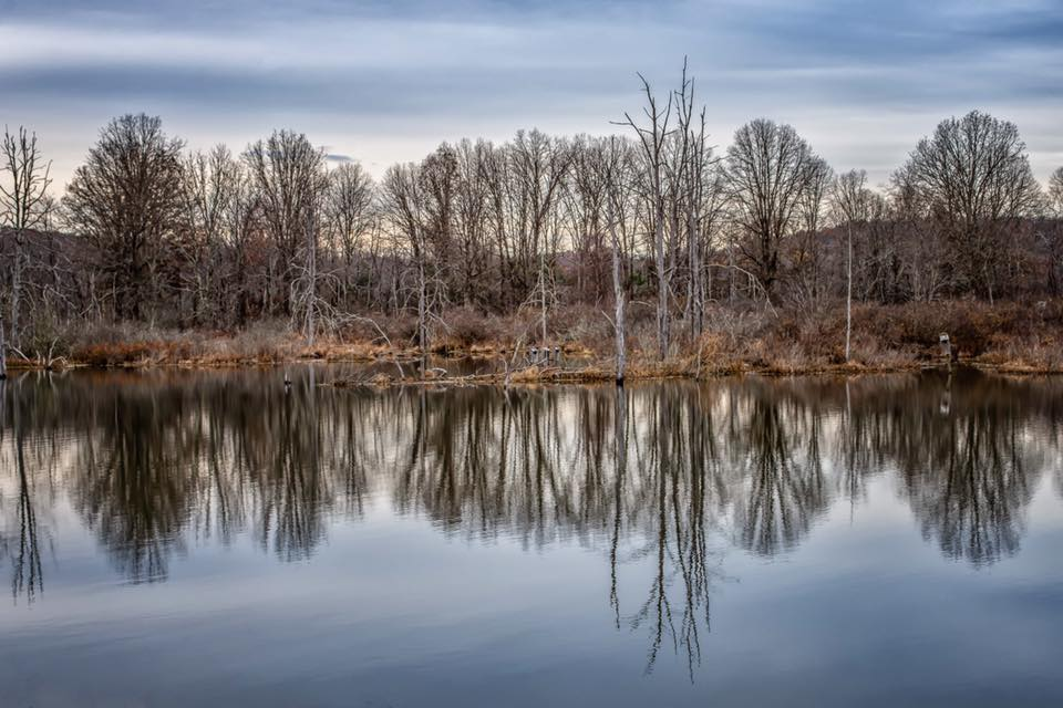 Beaver Creek Pond, Knox. Courtesy of John McCullough Photography.