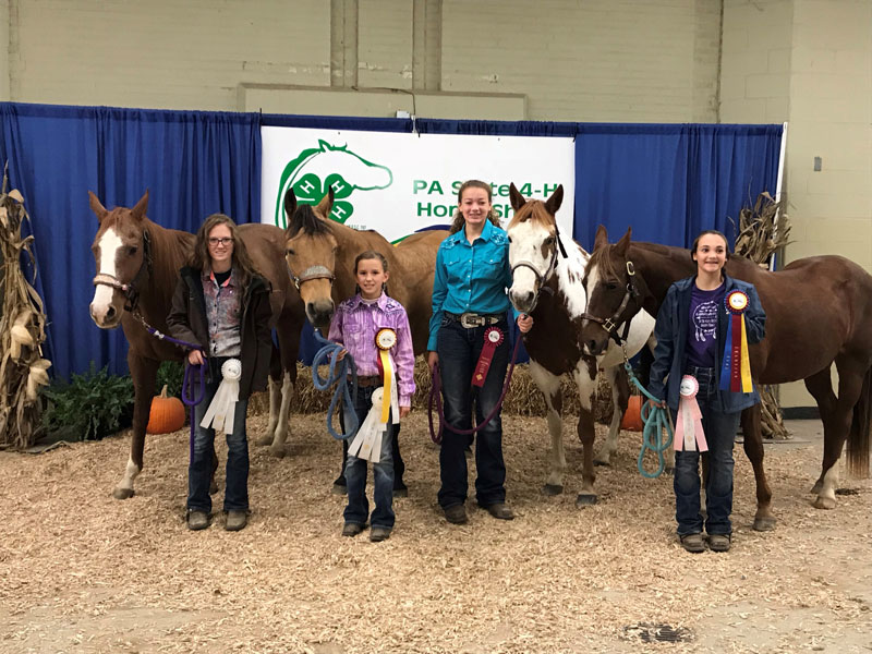 PA-State-4-H-Horse-Show