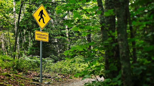 Bigfoot Crossing, as seen in Cameron County.