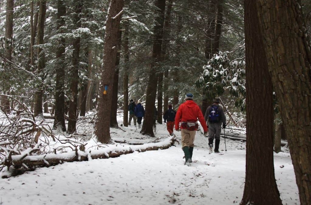 sf-northcountry2-trail-hike-first-day-snow-winter-DCNR-1024x675