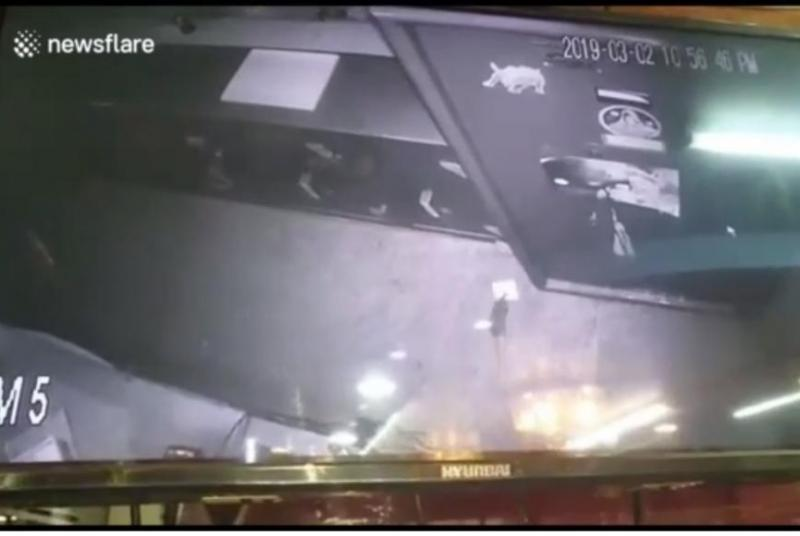 Security-footage-identifies-jewelry-store-thief-as-a-rat