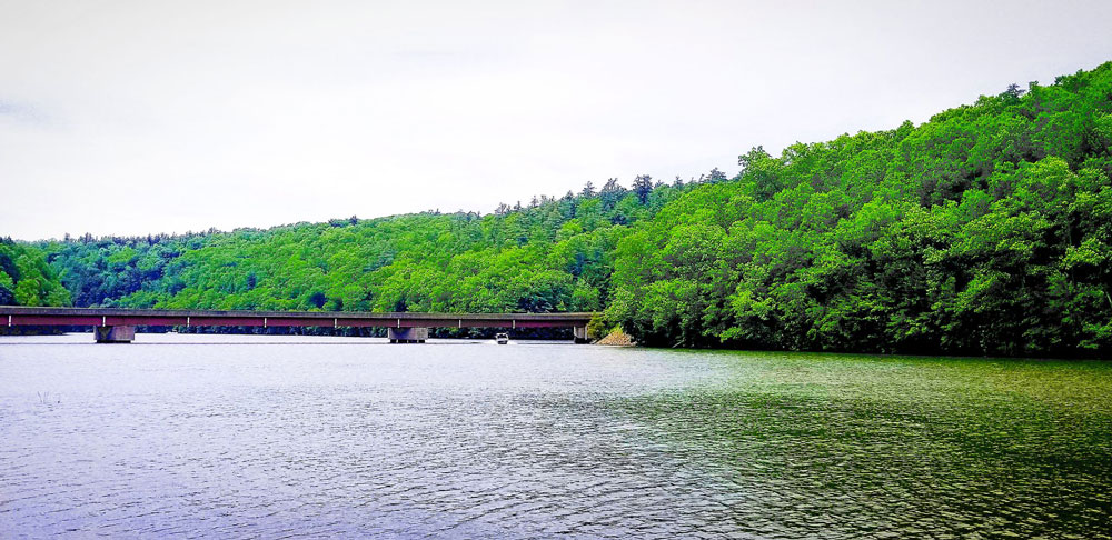 On the Clarion River. Submitted by Darren Troese.