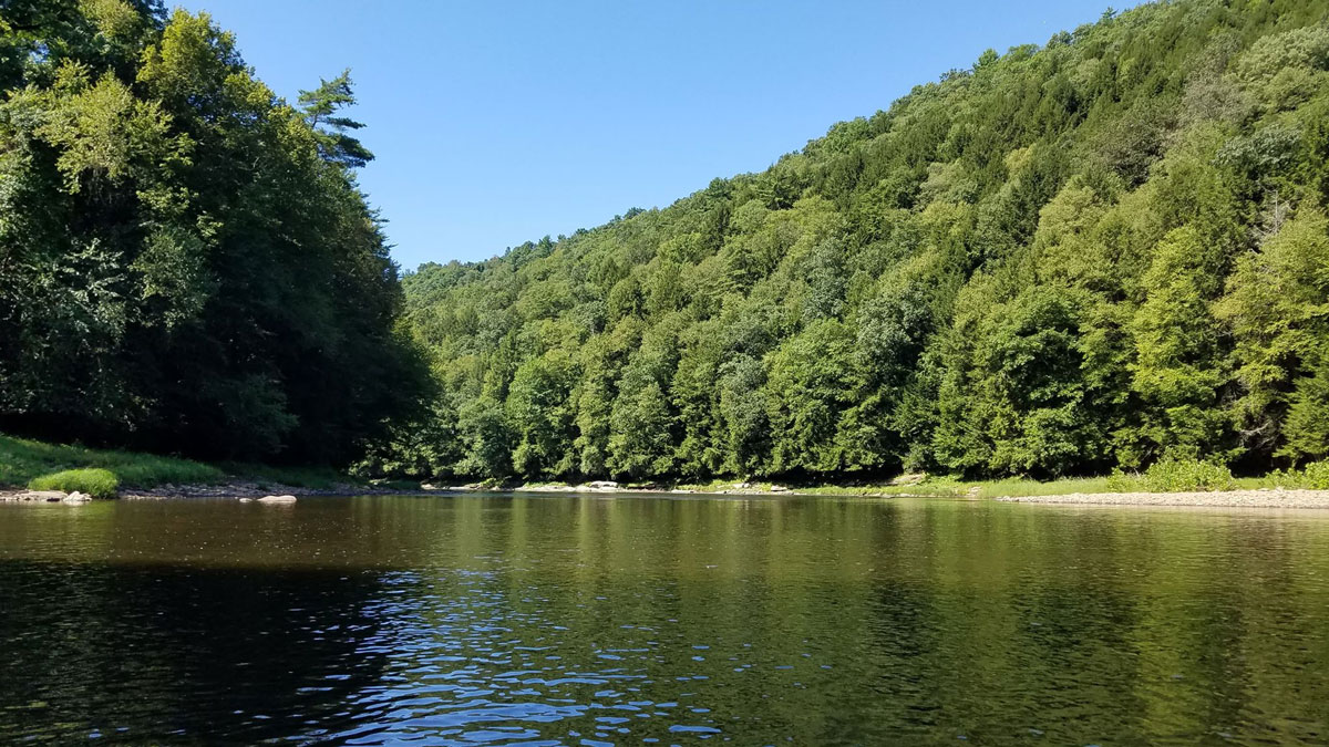 On the Clarion River. Submitted by Mary Hazlett.
