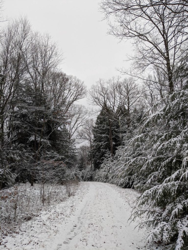 Near Fisher in Clarion County. Photo courtesy Amy Wolbert.