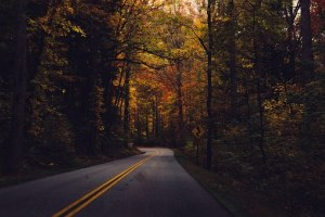 country-road-in-fall