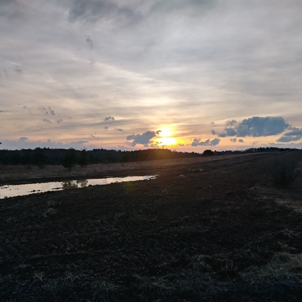 Sunset in Miola. Submitted by Jonathan Smith.