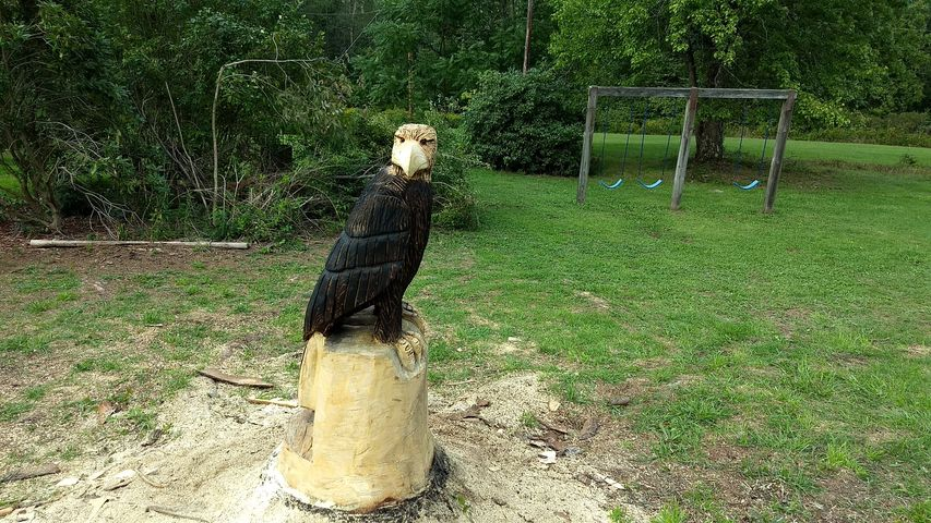 On-site wood carving done on Kissinger Mills Rd. in Rimersburg by Steve Cope. Submitted by Heather Ritchey.