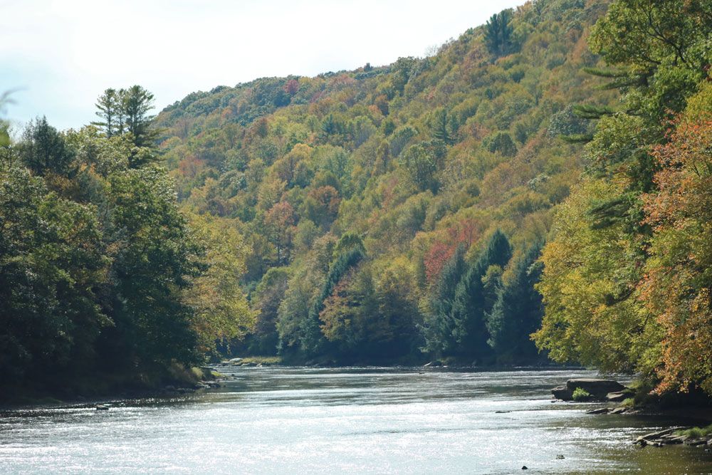Cook Forest Clarion River early fall