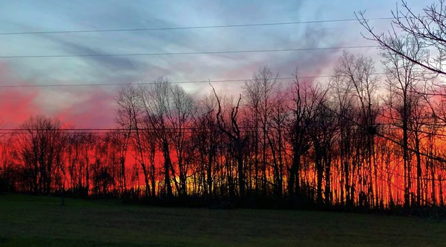 November 19th sunset in Fryburg. Submitted by Jamie Vogelbacher.