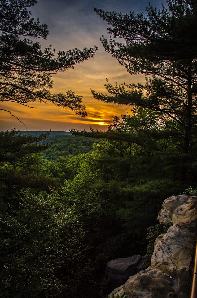 Cook Forest State Park's Seneca Point. Photo: Jeff London.