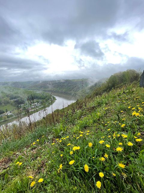 """""""Finding beauty on rainy days is easy in Clarion County."""" Submitted by Jodie Glosser-Beabout."""