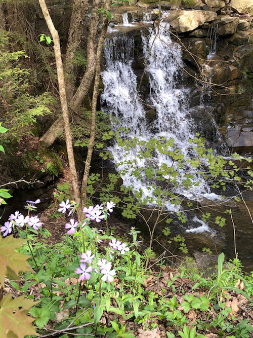 Buttermilk Falls near Parker. Submitted by Christian Best.
